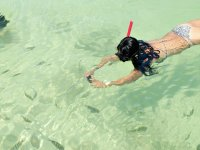 Tour Tulum cenote beaches with accommodation Cancun 4d