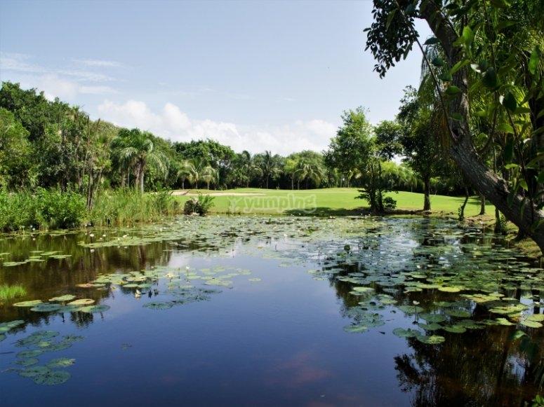 lago del campo