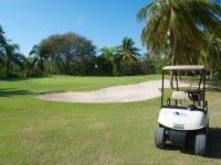 Disfruta jugando al golf