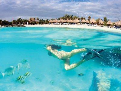 Tour Tulum cenote, beach + Premium lodging 4Days