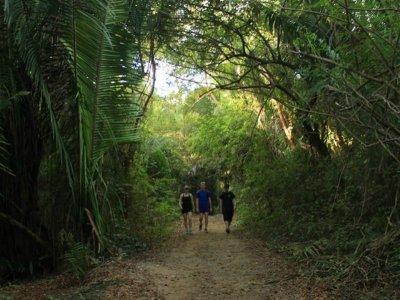 Hiking tour at Sayulita-San Pancho