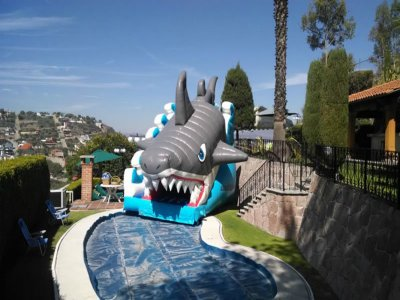 Shark inflatable