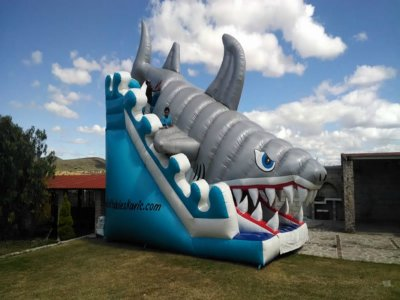 Shark inflatable rental for events