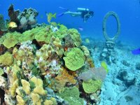 Buceando en Cancun