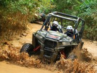 Total adventure in our buggies