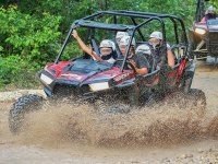Our buggies will make you spend a day very fun