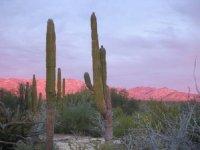 Desierto en La Ventana