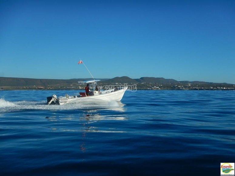 Paseo en barco a la isla