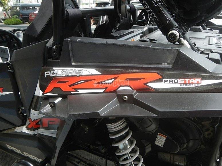 Alquiler de RzR.