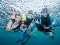 Tour Snorkel con Tortugas y Cenote Padres