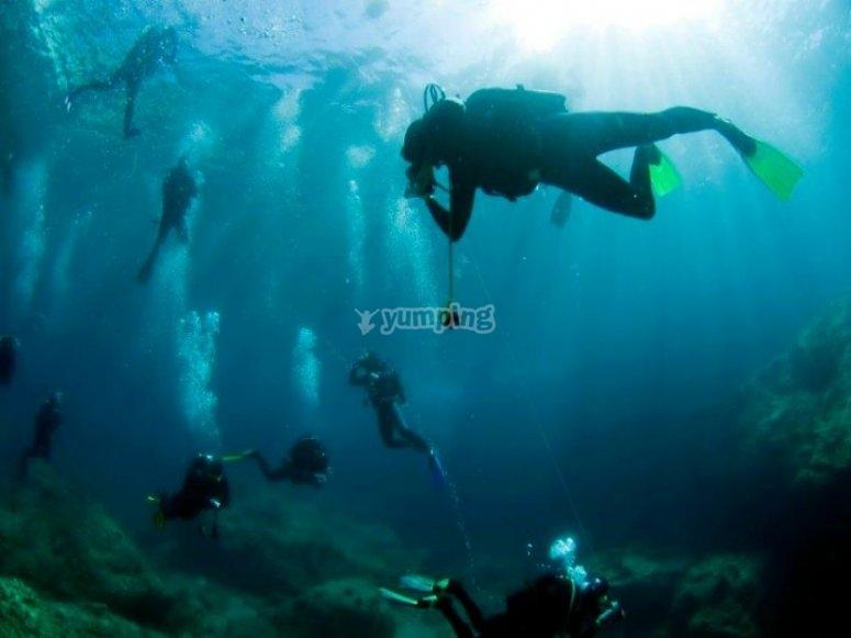 Bajo el bello mar