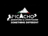 Picacho Adventures Buggies