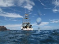 Sea fishing adventure