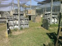 Gotcha in Jardines del Valle 375 capsules and equipment