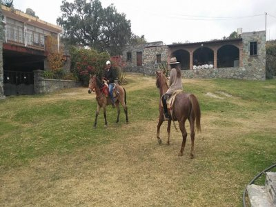 Cabalgata en Guanajuato capital