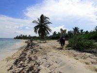 En el Caribe