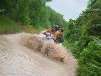 ATV in the jungle