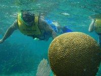 Exploring coral reef
