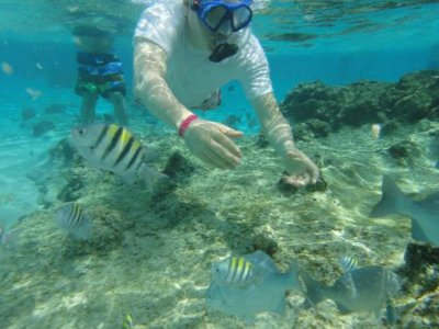 Snorkel en arrecife de Cancuncito