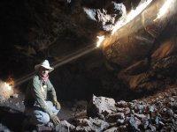 Lobo en cueva