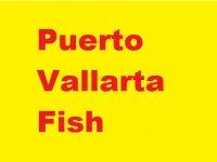 Puerto Vallarta Fish