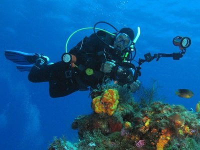 The Abyss Dive Center Buceo