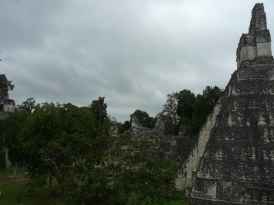 Tour to Tikal from Cancún, in Guatemala