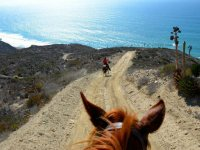Incredible landscapes with your route on horseback