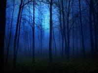 Senderismo por la noche