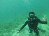 Experiencia de buceo en La Paz, BCS