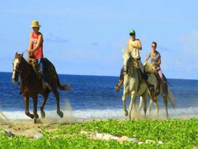 Horse Ride through Nayarit During 2 Hours