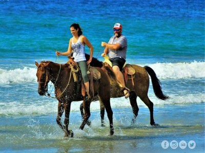 Horseback Riding + Canopy Tour in Higuera Blanca