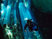 Dive in Cenotes