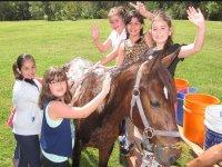 Ninos aseando al caballo