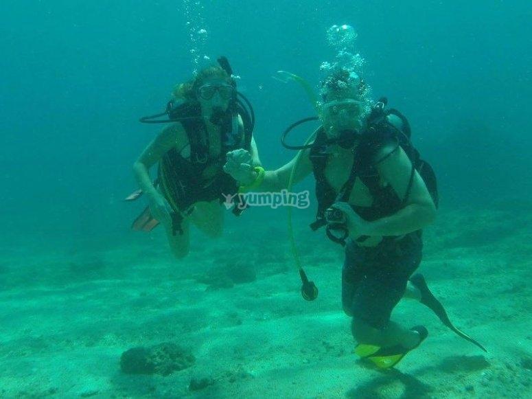 Diving dive in Baja California