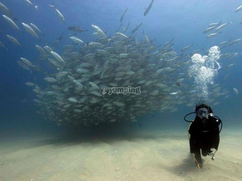 Hermosos paisajes marinos
