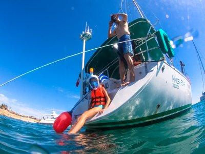 Paseo en barco y snorkeling por Los Cabos 3 horas