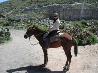 Horseback riding per route