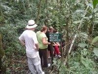 Recorrido por la selva