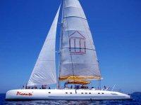 Wonderful Catamaran
