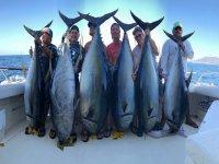 Pesca por la Bahía de Banderas por 4 horas