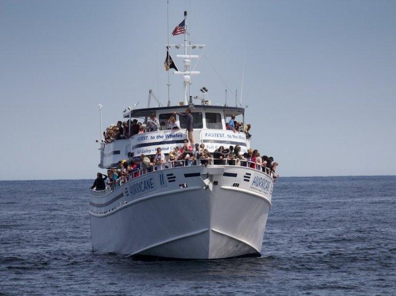barco nayarit