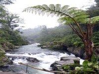 Rio Folobobos