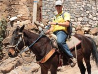 Real de 14 a caballo