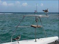 Sailboat trip in Quintana Roo