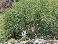 Caminata por el Cañón del Tabor