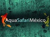 AquaSafari México Visitas Guiadas
