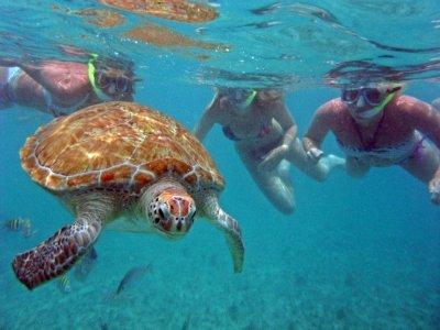 AquaSafari México Snorkel