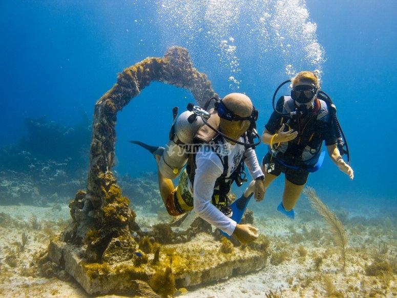 arrecifes de México