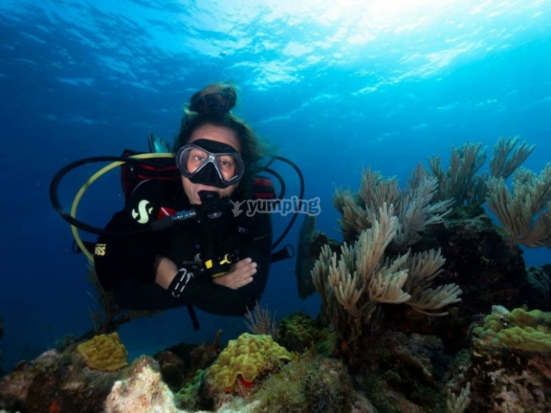 Vive la magia del buceo en Cancún